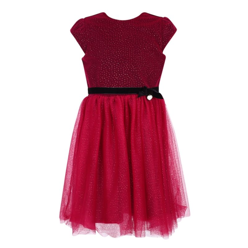 Princess Velvet Dress with Mesh Bottoms